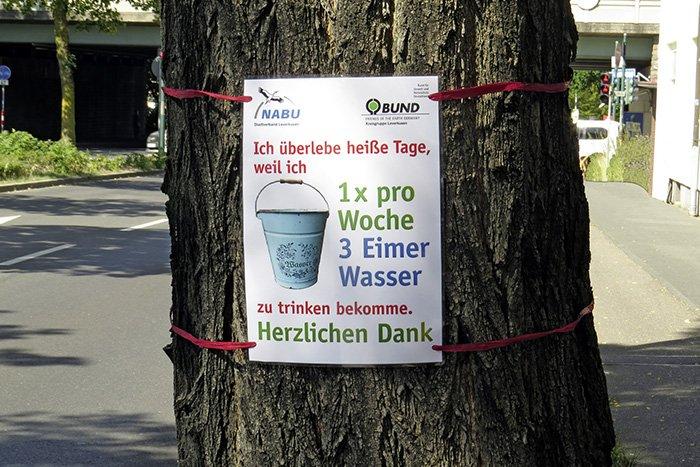 Plakat für unsere Aktion Stadtbäume gießen